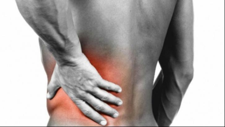 rinichii și articulațiile doare