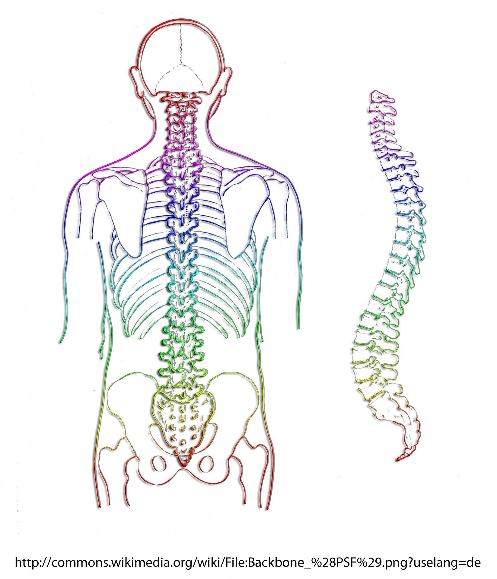 leziune articulară vertebrală