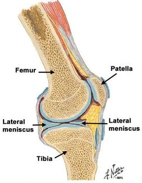 bloc în articulația genunchiului