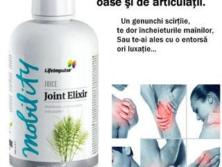 elasticitatea articulațiilor