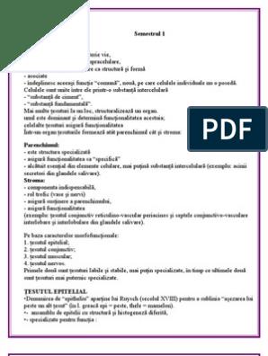 histologie medicamente țesut conjunctiv)