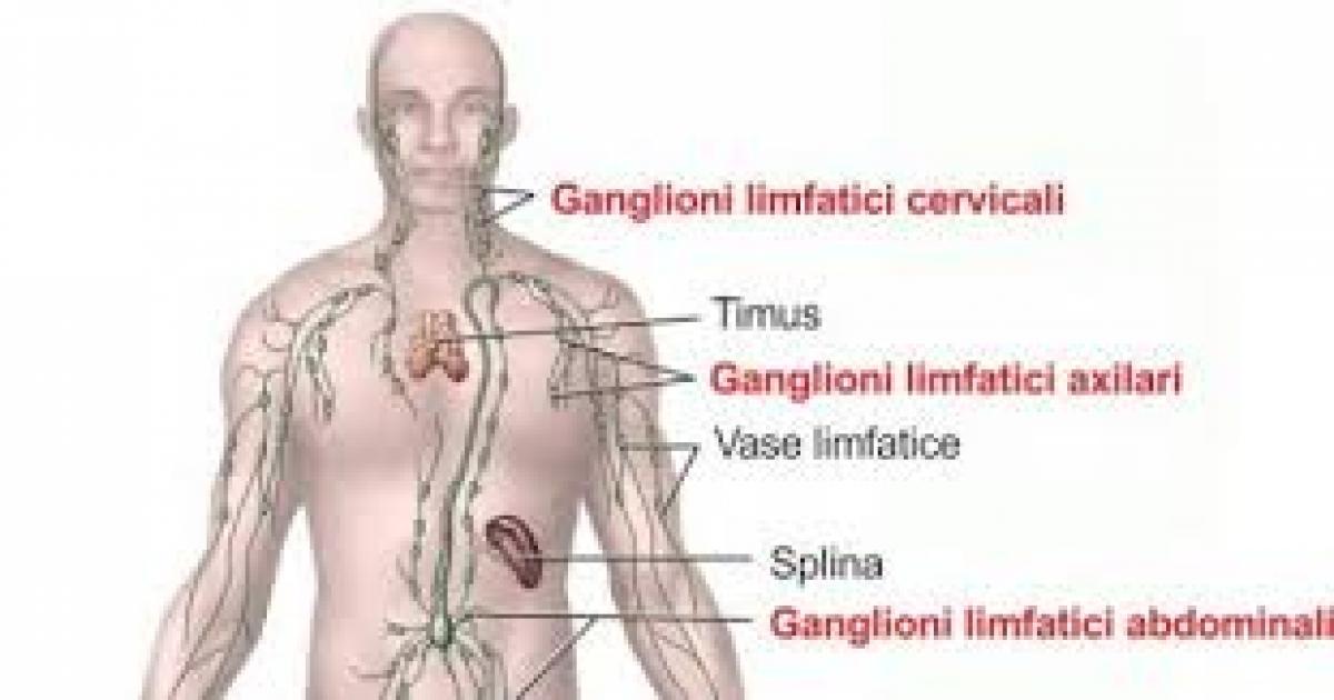 inflamația ganglionului limfatic al articulației cotului