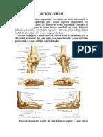 fizio cu artroza articulației cotului