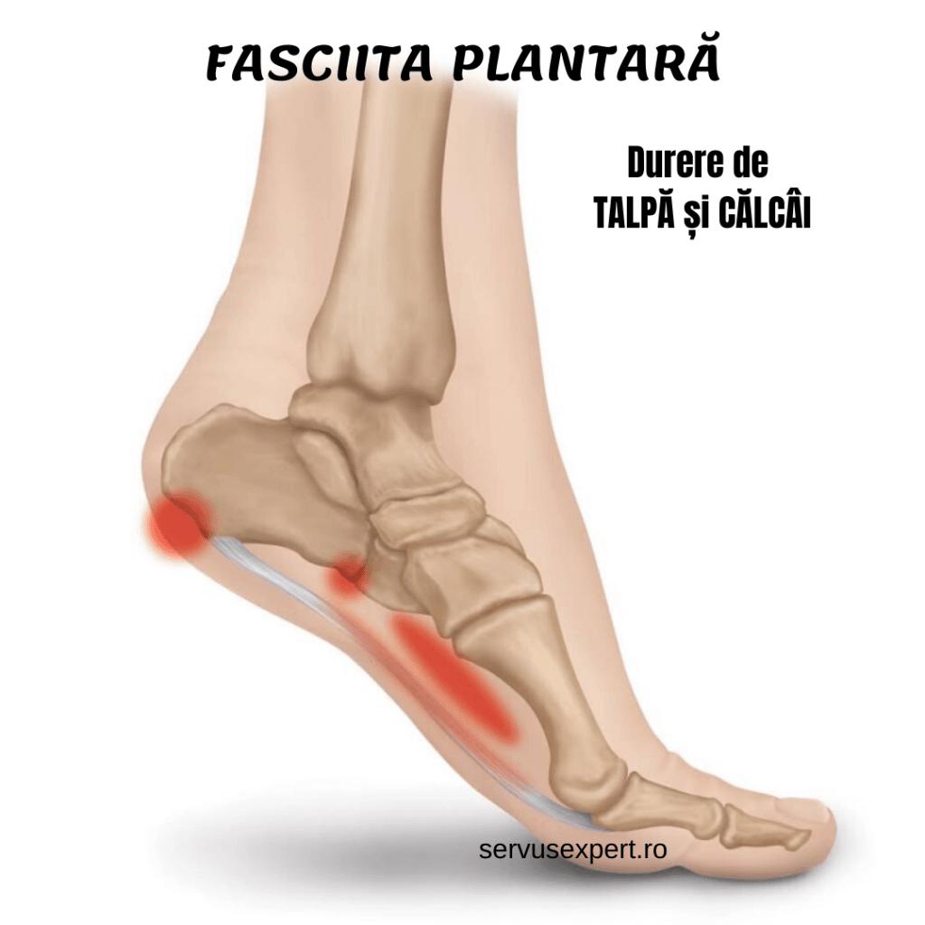 durere în articulația inferioară a piciorului