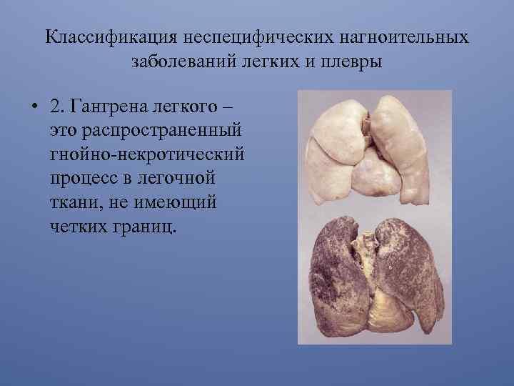 Reumatologia si bolile reumatice Boli articulare purulente