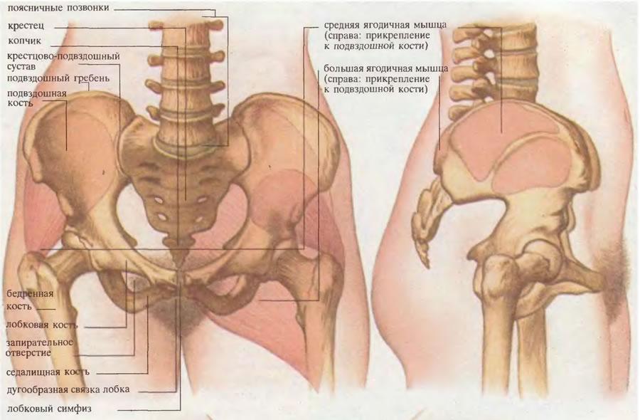 cum să oprești inflamația în articulații