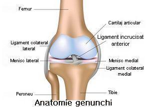 leziuni deschise la genunchi