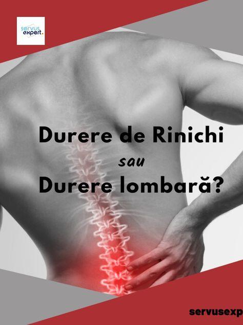 rinichii, dureri în articulații)