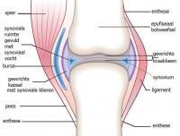 semne de inflamație articulară pe picior