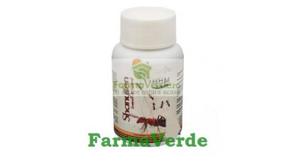 furnicile pentru tratamentul articular)