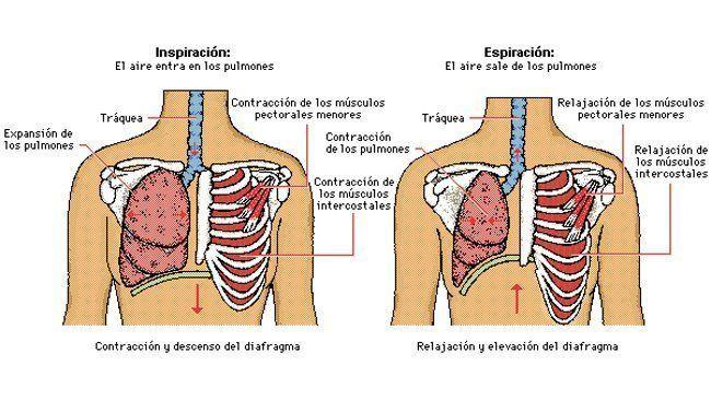 decât să tratezi def. artroza tratamente pentru bursita articulației cotului