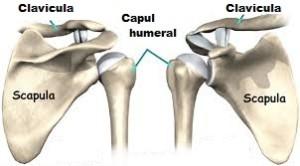 remediu pentru artrita articulara