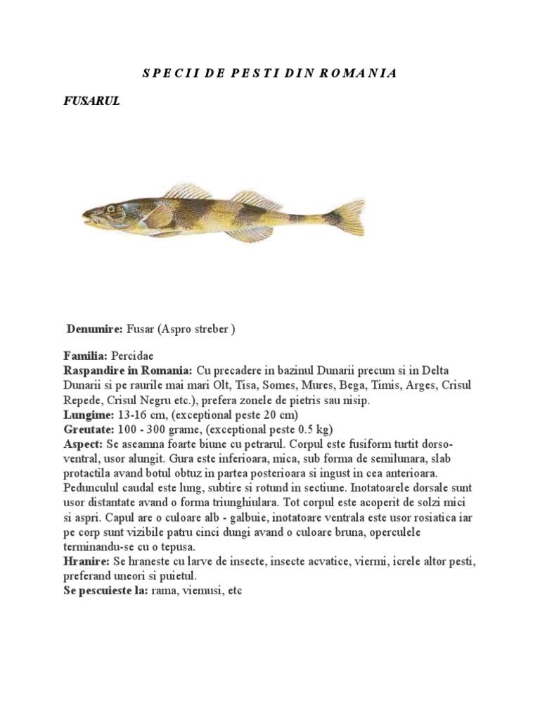 tratament comun cu pești de râu)