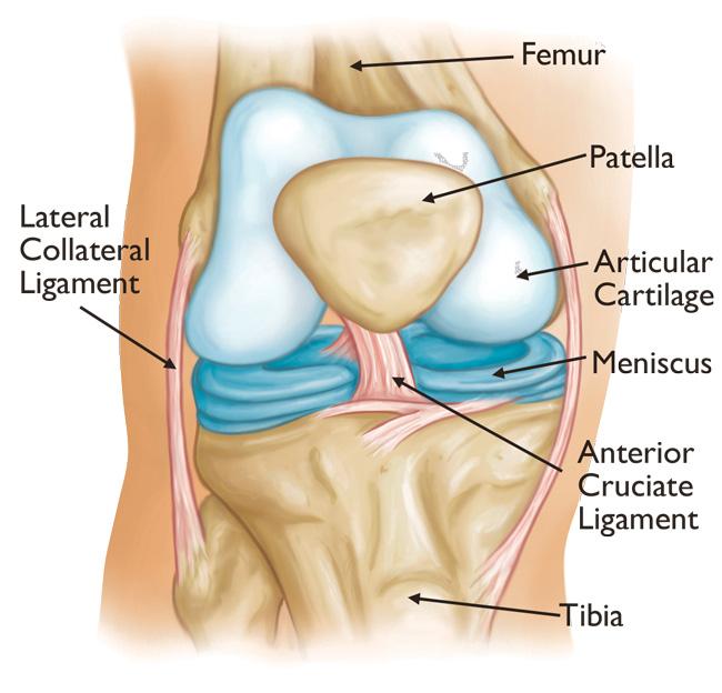 articulație dureroasă a genunchiului pe lateral