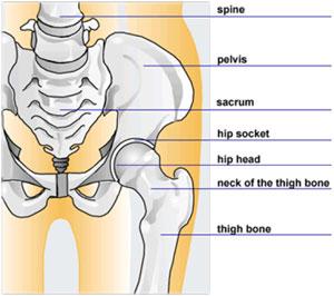 tratamentul medicamentos al artrozei tratamentului articulației genunchiului artrita de pe brat ce sa faci