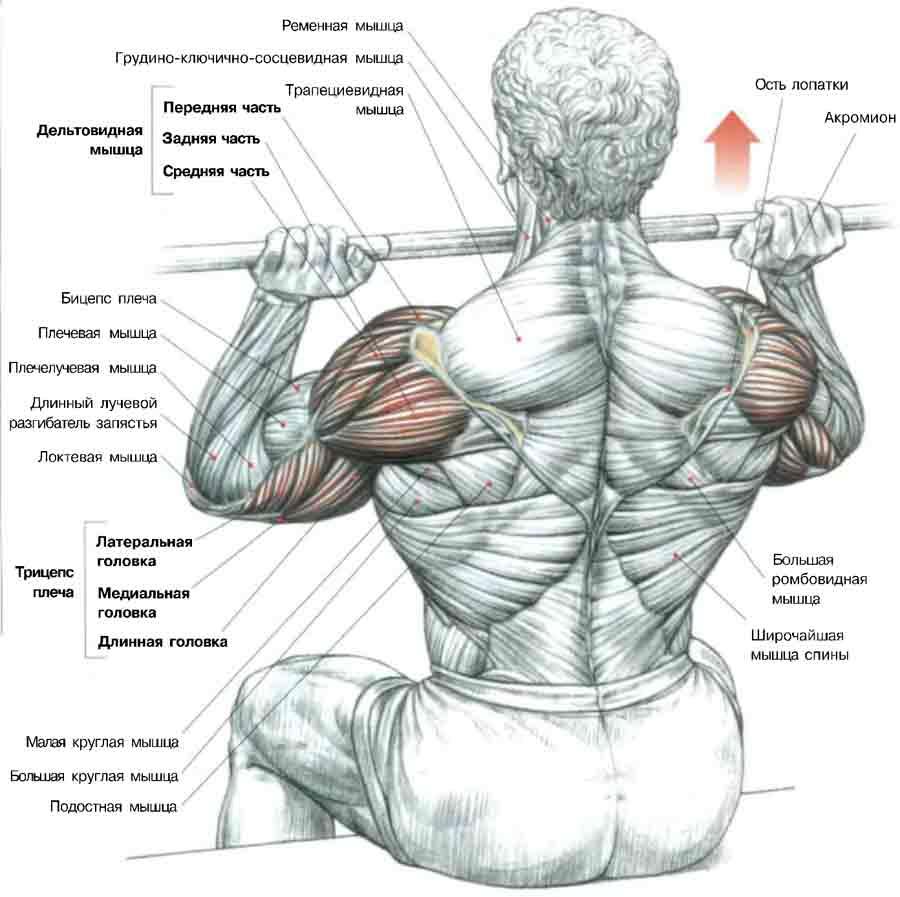 artrita poliartrita tratament artroza tratați clicurile comune