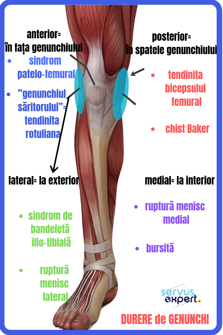 Durere genunchi unguent pentru articulațiile coloanei vertebrale