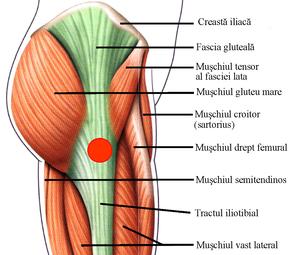 tratament pentru umflarea artrozei unguent pentru durere în articulațiile gâtului