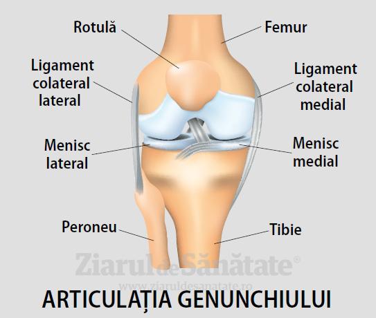deteriorarea tibiei în articulația genunchiului)