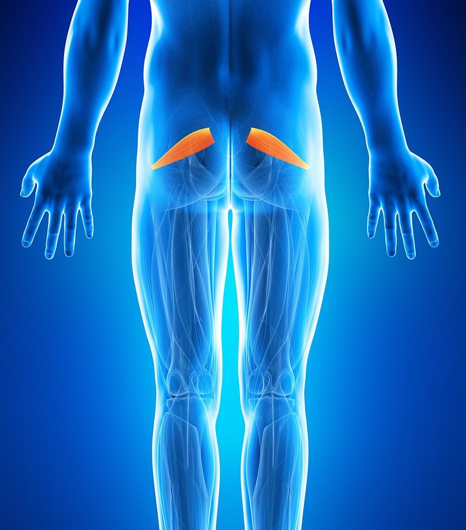 durere la coapsa stângă și la genunchi