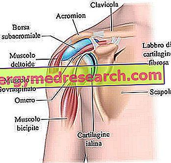 răni articulația umărului ce să faci)
