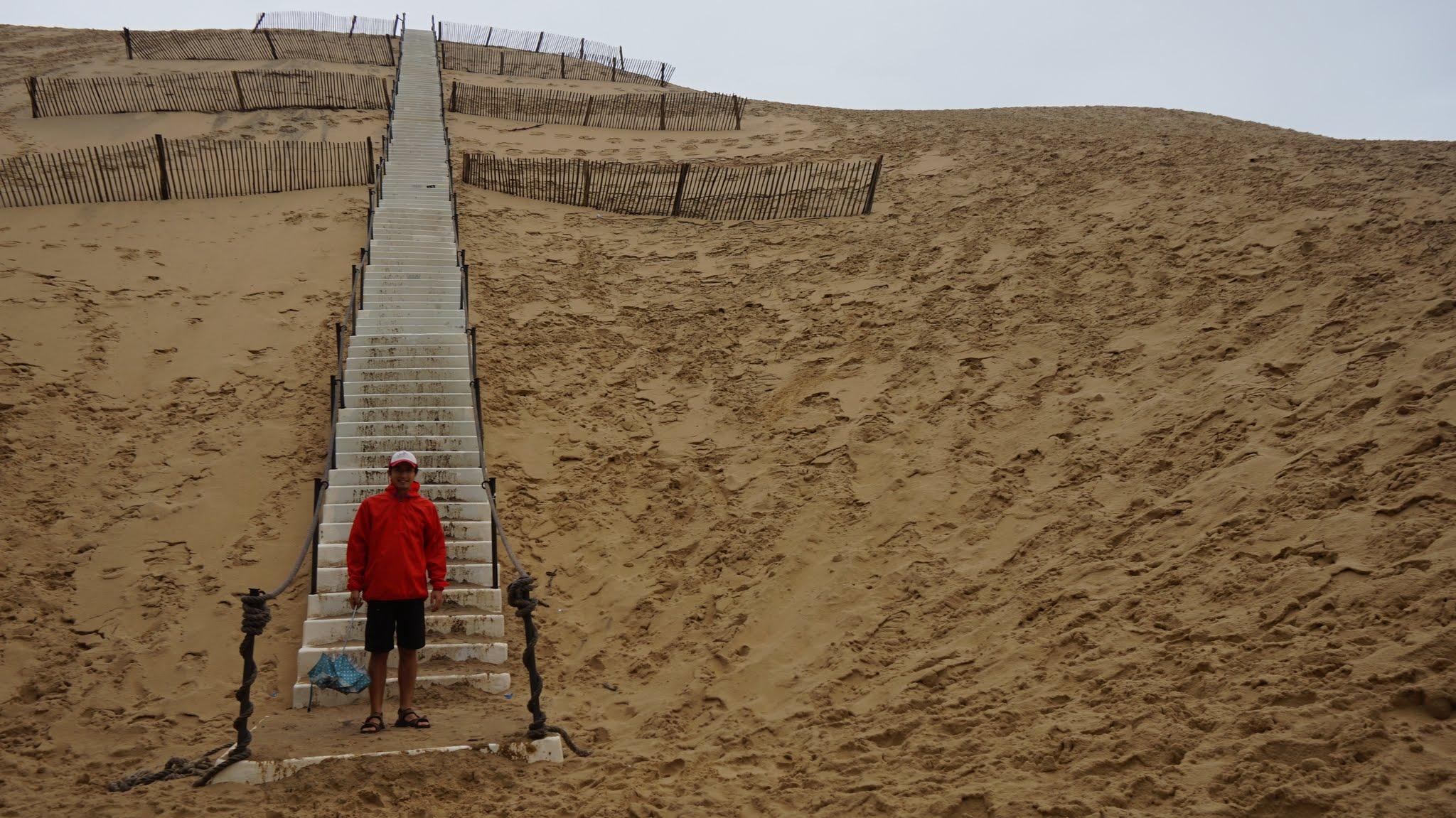 medicină comună pentru dună