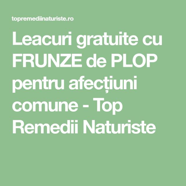 REMEDII NATURALE PENTRU CALMAREA DURERILOR COMUNE   blumenonline.ro
