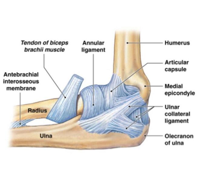 Unguent pentru nervul ciupit al articulației cotului
