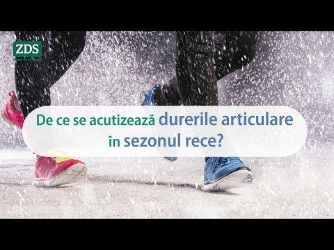 înot de iarnă și dureri articulare sinovita venoasă a tratamentului articulației genunchiului