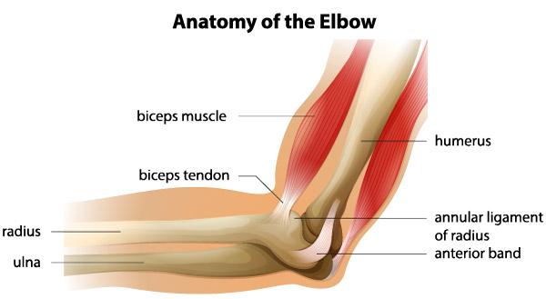 simptome durere în articulația cotului drept)