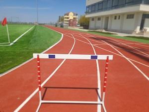 restaurare comună pentru sportivi