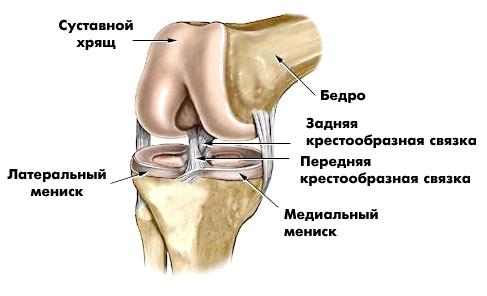 tratamentul prolapsului genunchiului