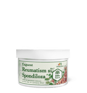 reumatism unguent)