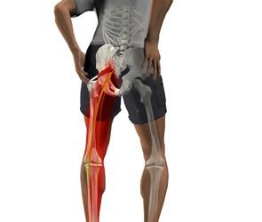 acces la articulația șoldului pentru artrită supurative