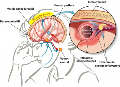 durere în articulația temporală din stânga