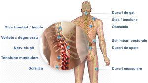 pentru dureri articulare intramuscular)