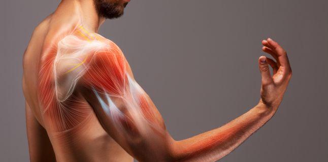 slăbiciune severă a durerii în mușchi și articulații)